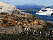 navegacion isla de lobos y faro