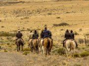 tour cabalgata patagonia hostel calafate patagonia
